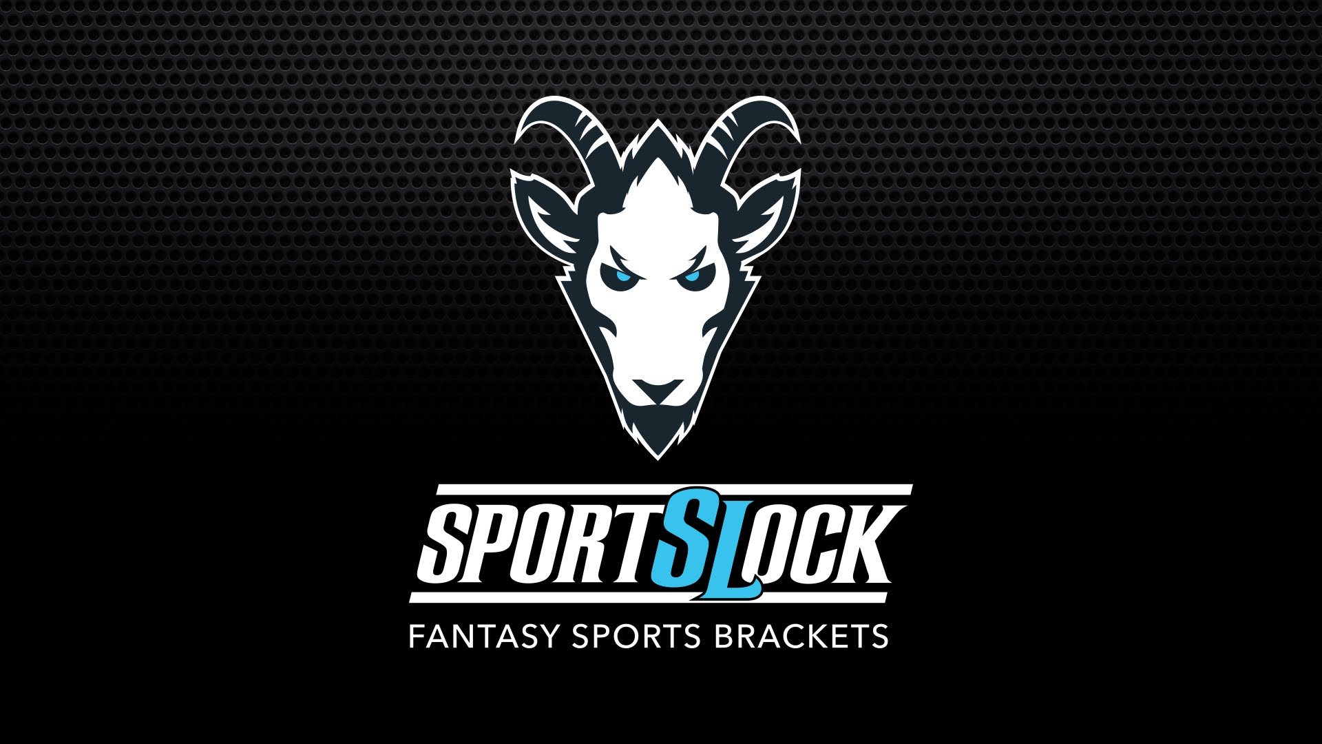 Announcing Our Partnership with 6 Million Dollar Company Sports Lock!